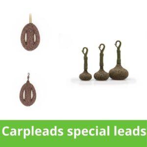 Carpleads special leads