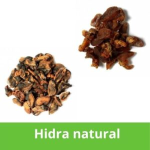 Hidra natural